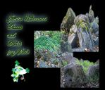 Green leaves and Rocks Stock BY JossetteDHermanni by JossetteHermanni