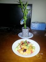 My fruit salad...and Mr Bamboo by SmileOfMalevolence