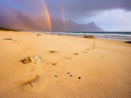 After the Rains by hougaard