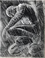 The thinking Spiderman by anveshdunna