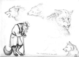 Illustrations for the Wolf I by Schwarzenwolf