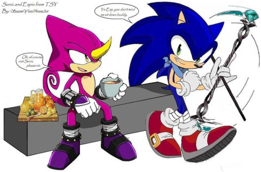 From TSY - Sonic and Espio by SeasonYears94roozArt