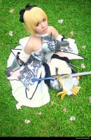 Saber Lily by jiocosplay
