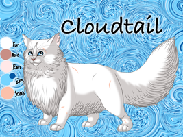 Cloudtail of ThunderClan - Waning Moon by Jayie-The-Hufflepuff