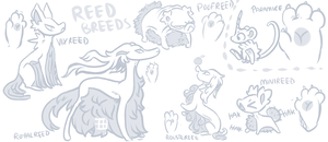 Reed Breeds and Paramice by griffsnuff