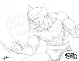 Wolverine by ChipWallace