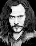 Harry Potter Project: Sirius Black by artbyjoewinkler