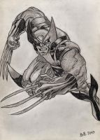 Wolverine by Bill-Con