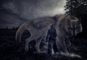 Great Grey Wolf Sif by LittleWalkinDisaster