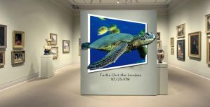 Museum of turtles by ThaMex4lif3