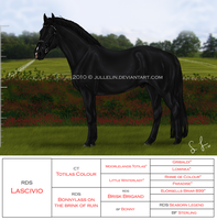 RD's Lascivio by Jullelin