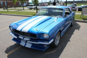 Beautiful Mustang by KyleAndTheClassics