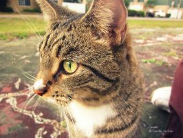 Tigger by GorgeousSoul