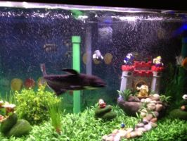 Mario fish tank (7) by bookchick6