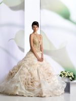 Bridal Gowns by angellica0212
