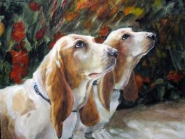 Bassets by ALRadeck