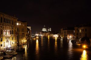 Can't Get Enough of Venice by Destroth
