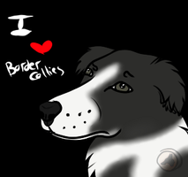 [Free to use] I Heart Border Collies Icon by Leopra