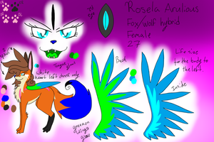 Rose ref by RoselaRiolu