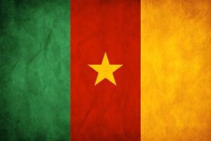 Cameroon Grunge Flag by think0
