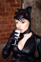 DC Catwoman by Almost-Human-Cosband