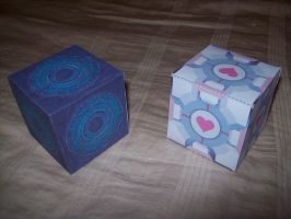 Companion Cube and Pandorica by supersmeg123