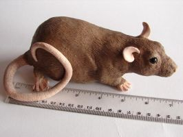 Rat sculpture measurement by philosophyfox