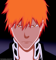 Bleach 480 by rainbird92