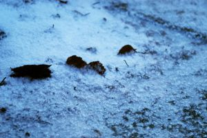 winter concrete by LeperGnome