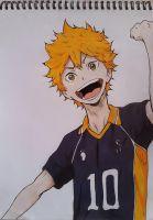 Hinata Shouyou by passthenoodles
