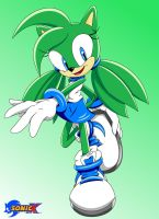 Sonic X-Irma .:Request:. by SoleannaSolstice