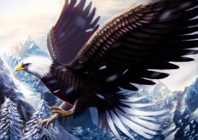 Eagle by BillCreative