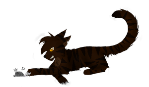 Tigerstar again by Pantherklaue