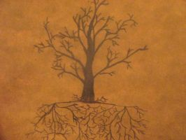 Same Roots Different Tree by ObeyGrey20