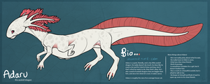Adaru the Axolotl Dragon by AlanaRoseheart