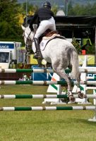 Jumping stock 31 by Kennelwood-Stock