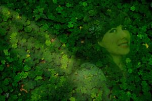Unidentified Clovers by theogroen