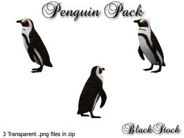 Penguin Pack by BlackStock