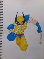 wolverine by marty0x
