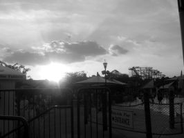 Sun In the Parque -grayscale- by Tya226148