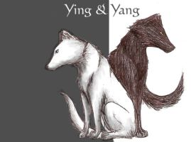 ying and yang by the-lazy-artist