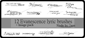 Evanescence Lyrics 2 by ICouldntThinkOfAName