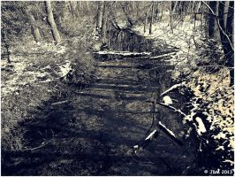 Black And White Winter by JDM4CHRIST