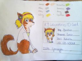 K9L-Beatrice Conor by CarrieShells