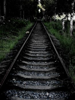 The tracks by HerminBean
