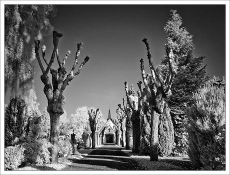 ir cemetery by neoloonatic