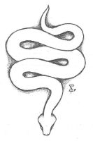 Snake Tattoo Design by tenimeart