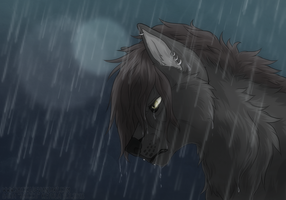 The rain will wash your tears away by Saiccu