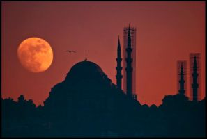 moon and mosque by globalunion