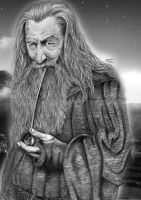 Gandalf by Kalvedia